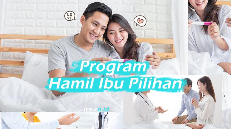 Program Hamil Ibu Pilihan